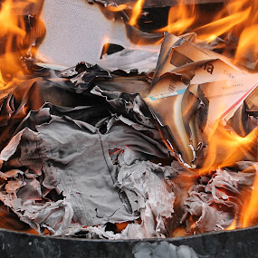 Bonfire of the Vanities by Barb Toews - Artistic Objects Other Objects ( paper, burning papers, campfire, fire, fire pit )