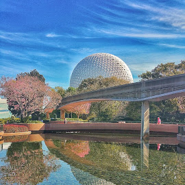Spaceship Earth  by Jeff McVoy - Instagram & Mobile Android ( water, reflection, amusement park, park, blue, sunny, green, epcot, disney )