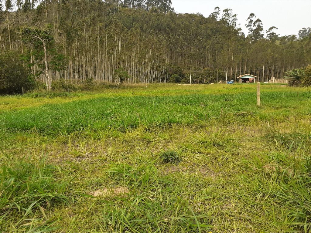 Sítio à venda, 1330 m² por R$ 130.000,00 - Oliveira - Tijucas/SC
