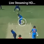 Live Cricket Streaming HD Icon