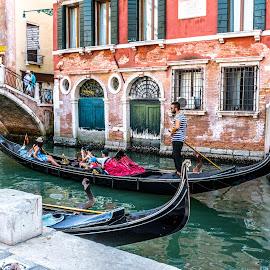 The Gondolas by Hariharan Venkatakrishnan - Transportation Boats ( water, gondola, venice, canal )
