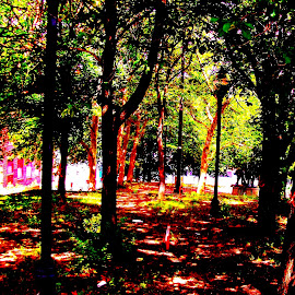 Howard Park, Seton Hill, Baltimore by Mark Zukaitis - City,  Street & Park  Neighborhoods