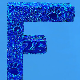 Letter F 1 by RMC Rochester - Typography Single Letters ( abstract, macro, letter, colors, art, random, typography )