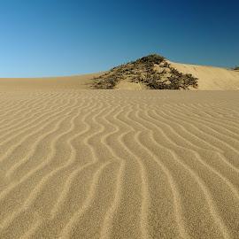 by Belinda Smithdorff-Hunt - Landscapes Deserts