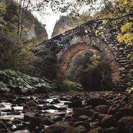 Old bridge by Vladeta Manic - Buildings & Architecture Bridges & Suspended Structures ( nature, stone, bridge, river )