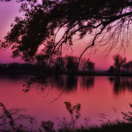 Tranquility by Jolene Erickson - Landscapes Waterscapes ( water, tranquil, sunset, fall, trees )
