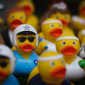 Duck_Police.jpg