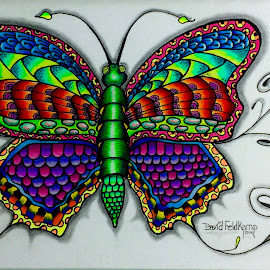 Colorfly by Dave Feldkamp - Drawing All Drawing ( colored pencil, sketch, doodle, art, zentangle, drawing )