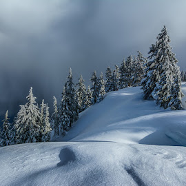 by Trisha Payne - Landscapes Weather ( oregon, crater lake, snow, frozen, pacific northwest, seven wonders of the world )