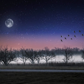 Foggy Dawn by Kathy Suttles - Digital Art Places ( pink dusk, foggy morning, oklahoma, full moon, morning flight )
