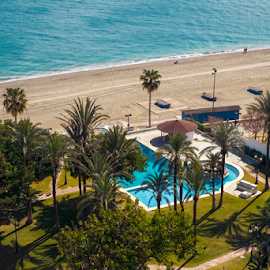 Swimming pool with palm trees by the sea beach by Roberto Sorin - City,  Street & Park  Vistas ( beauty, palm, beautiful, view, poolside, nobody, resort, sunny, sky, lounge, spa, island, recreation, relaxation, pool, tree, water, coast, sand, ocean, background, paradise, color, tourism, turquoise, holiday, house, sun, summer, sea, swimming, modern, swimming pool, hotel, vacation, exotic, leisure, green, nature, umbrella, chair, relax, outdoor, tropical, blue, beach, sunset, luxury, travel, landscape )