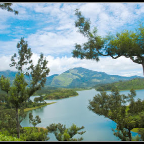 lake at munnar.jpg