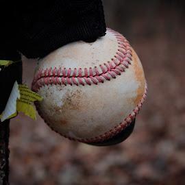 Pastimes by Kara Johnson - Sports & Fitness Baseball