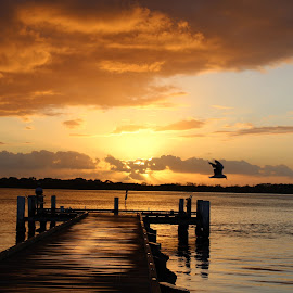Mrs Carole Johnson by Carole Johnson - Landscapes Sunsets & Sunrises