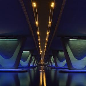 C:\Users\Armando\Desktop\ENTRY\Under Garhoud Bridges.JPG