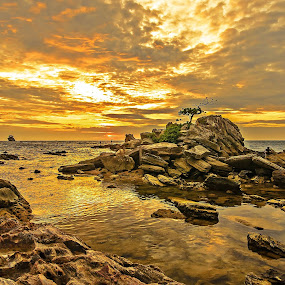 Somewhere in Labuan Island by None 5999 - Backgrounds Nature ( nature, sunset, background, landscape, panorama )