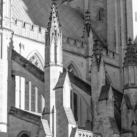 Flying Buttress of the Washington National Cathedral by Gary Hanson - Black & White Buildings & Architecture ( flying, detail, buttress, washington national cathedral, exterior, bw )