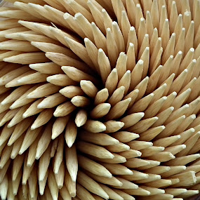 blooming toothpick by Glenn Bobiles - Artistic Objects Other Objects