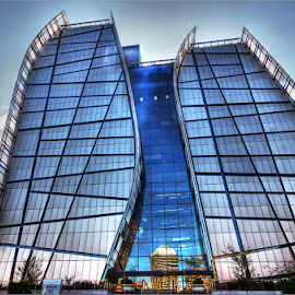 glass building by Leon Pelser - Buildings & Architecture Office Buildings & Hotels ( iso 300, f 11, daylight wb, tripod, 1/30/,  )