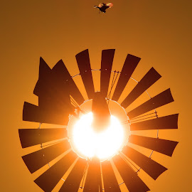 Windmill at Sunrise by Larry Strong - Artistic Objects Other Objects ( windmill )