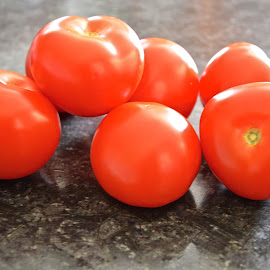 shiny tomatoes by Rachel Rachel - Food & Drink Fruits & Vegetables ( fleshy, red, ripe, multiple, tomatoes )