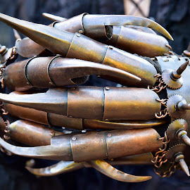 Dangerous Claws by Marco Bertamé - Artistic Objects Other Objects ( metal, stgeampunk, claw )