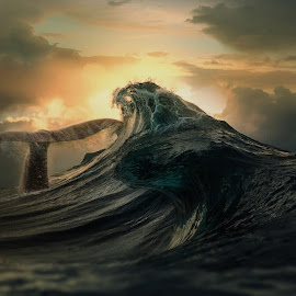 Whale by Nektarios Karagiannis - Digital Art Animals ( sunset, waves, fine art, sea, seascape, whale )