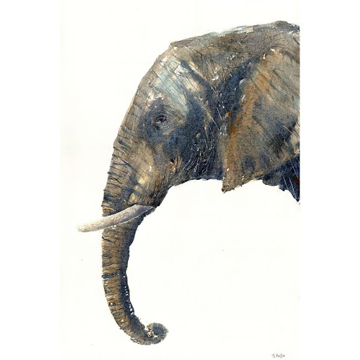 Elephant art painting africa watercolour