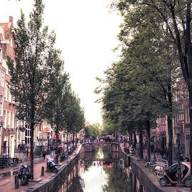 amsterdam by Adam Lang - City,  Street & Park  Neighborhoods ( holland, reflections, trees, amsterdam, canal )