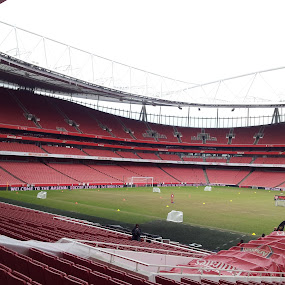 Emirates pitch by Deni Špiranec - Sports & Fitness Soccer/Association football ( emirates, fly emirates, arsenal, emirates stadium, stadium, pitch, gooners )