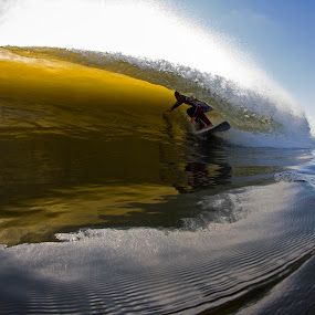 Porter covered by Dave Nilsen - Sports & Fitness Surfing