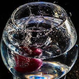 Water Art by B.Thinesh Kumar - Abstract Water Drops & Splashes ( waterart, water, splash, splash photography, splash water photography )