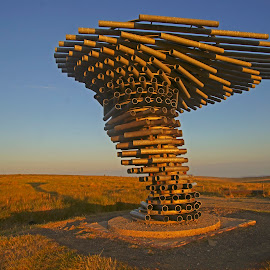 Singing Ringing Tree by Bob Rawlinson - Buildings & Architecture Architectural Detail ( 11 07 18 )