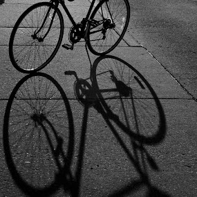 Shadow Ride by Chris Taylor - Transportation Bicycles ( abstract, fitness, black and white, shadow, sports, bicycle )