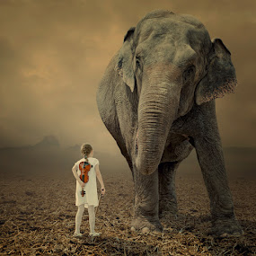 Come on, let me play your violin by Caras Ionut - Digital Art People ( field, walking, red, sky, girl, tree, violin, singing, elephant, ground, mounting )