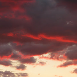 sunset by Adriana Petcu - Abstract Patterns ( sky, red, color, blue, sunset )