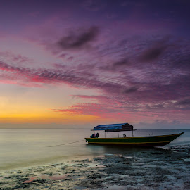 sunrise by Albert Lee - Landscapes Sunsets & Sunrises