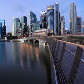 Jubilee Bridge by Freddy Ng - City,  Street & Park  Skylines ( merlion park, waterfront promenade, jubilee bridge, esplanade, singapore )
