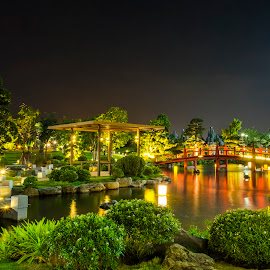 New park in the city at night. by Bảo Long - City,  Street & Park  City Parks ( exposure, park, green, peacefull, vietnam, night, saigon, long, garden, light, city )