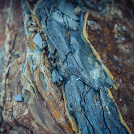 by TJ Morrison - Nature Up Close Rock & Stone ( nature, stone, rocks, photography )