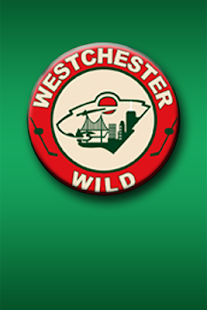 Westchester Wild Hockey - screenshot