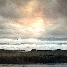 Before The Storm by Bjørn Borge-Lunde - Digital Art Places ( shore, clouds, lightning, seagull, waves, sea, beach, seascape, storm, skies )