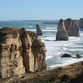 The Twelve Apostles by Dizzy Flier - Landscapes Beaches ( eos 1000d, canon, beaches, nature, twelve apostles, australia, victoria )