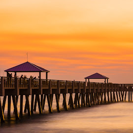 Long Pier at Dawn by Carl Albro - Buildings & Architecture Bridges & Suspended Structures ( dawn, pier, long exposure )