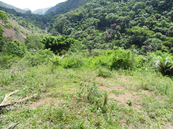 Terreno Residencial à venda em Secretário, Petrópolis - Foto 2
