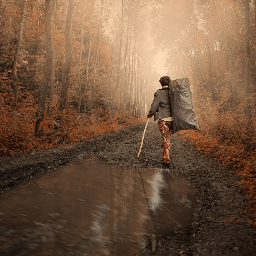 Secret's of the forest by Caras Ionut - Digital Art Things ( http://carasdesign.ro/tutorials )