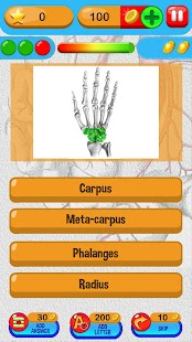 Anatomy Quiz Free Science Game - screenshot