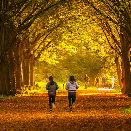 run  to remember by Krishanu Roy - City,  Street & Park  Street Scenes