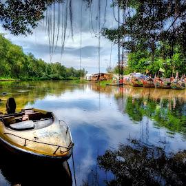 Swamp by Max Bowen - Nature Up Close Water