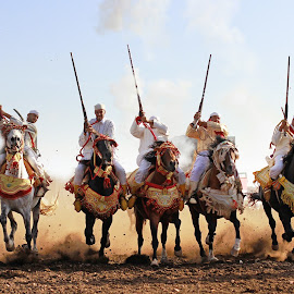 The Show  by Badr Pedro - People Group/Corporate ( horses, morocco )